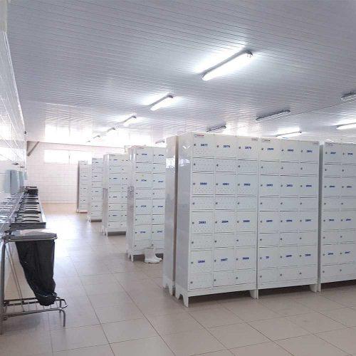 armario para vestiario de frigorifico em uso modelo civil 12 usuarios com compartimento para epi